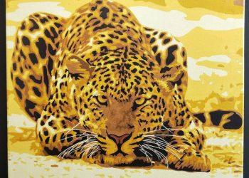 獵豹 | Paint by number | 35easy